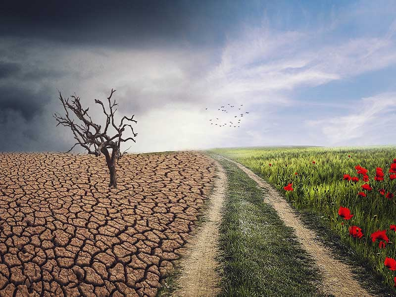 Medidas en el audiovisual en España contra el cambio climático